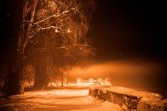 Winter misty embankment in the light of lanterns.  stock photo