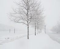 Winter Misty lake Stock Photography
