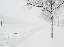 Winter Misty lake Royalty Free Stock Photo