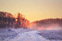 Winter misty sunrise. Rural foggy and frosty scene. Royalty Free Stock Photo