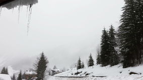 Winter misty timelapse
