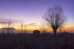 Winter mitten in Spanien, Gallocanta Lizenzfreie Stockbilder
