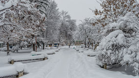 Winter in Montana 01. First snow for 2017 here in Montana, Bulgaria. Over 35cm for just a night. It was snowing all day, but I was determined to make some snow Royalty Free Stock Photos