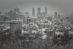 Winter in Montreal city Stock Images