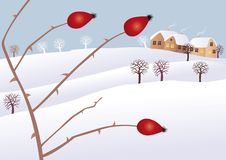 Winter mood Royalty Free Stock Images