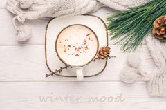 Winter mood. Cappuccino with cinnamon, a branch of a pine tree and knitted accessories. Toned photo. Winter mood. Cappuccino with cinnamon, a branch of a pine royalty free stock images