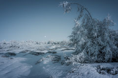 Winter mood. A spectacle of Nature with a Full Moon and a frozen forest in the main roles on the Ceahlau mountains, Romania Royalty Free Stock Photography