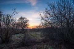 Winter mood at sundown Royalty Free Stock Photo