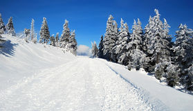 Winter near the Lysa hora Stock Image