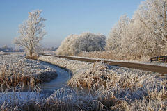 Winter-Morgen Stockbild
