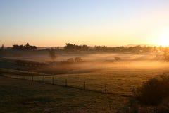 Winter Morning. Shaortly After Dawn. Farmland Waikato New Zealand stock photo