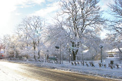 Winter morning. After snow storm Royalty Free Stock Photography