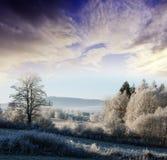 A winter morning Royalty Free Stock Photos