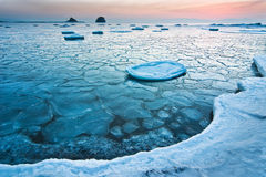 Winter morning 5. Japan sea. Amur gulf. Russia. Winter morning. Shot 5 in serie. Crushed ice stock image