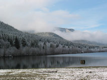 Winter Morning. A winter morning at a mountain lake royalty free stock photos