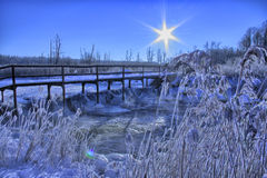 Winter morning. Above the river Stock Photography