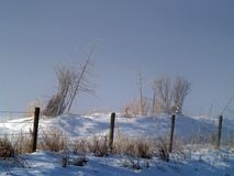 Winter Morning And Fencing Stock Photo
