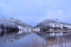 Winter Morning in Haugesund Stock Images