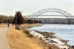 Winter morning Cape Cod Canal. Bright winter morning along Cape Cod Canal with ice and Common Eider Royalty Free Stock Photos