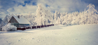 Winter morning in the Carpathian village Stock Image
