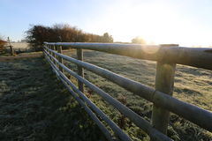 Winter morning in the countryside. A frosty winter`s morning in the English countryside with the sun rising off the fields Royalty Free Stock Images