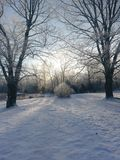 Winter morning after fresh snow fell overnight Stock Photography
