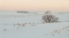 Winter morning Stock Photography