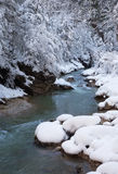 Winter morning in Guam gorge Royalty Free Stock Image