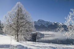 A winter morning at Lake Kochel Royalty Free Stock Photos
