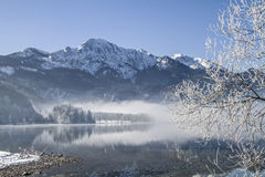 A winter morning at Lake Kochel Royalty Free Stock Images