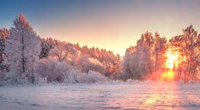Winter morning landscape sunrise. Winter morning landscape in frosty trees at dawn. Snowy nature in vivid sunlight stock images