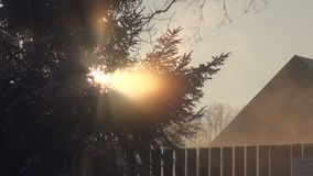 Winter morning with mist in village stock video footage
