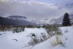 Winter Morning on Moraine Park royalty free stock photo