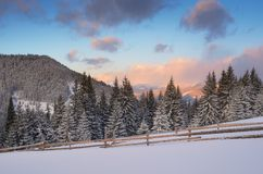 Winter morning in the mountains Royalty Free Stock Image
