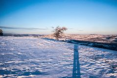 Winter morning on Ochodzita hill above Koniakow village in Beskid Slaski mountains in Poland. With snow,  tree, hills on the background and blue sky Stock Photos