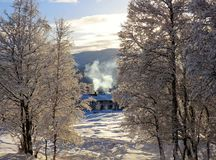 A winter morning. A peaceful winter morning in Norway Royalty Free Stock Photos
