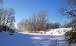 Winter morning on the river. Scenic winter landscape river and trees consecrated rising sun Stock Photography