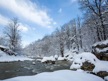 Winter morning by the river. Sunny winter morning by the river Royalty Free Stock Photography