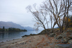 Winter-Morning See Wakatipu Lizenzfreie Stockbilder