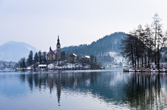 Lake Bled in southern Alps environment Stock Image