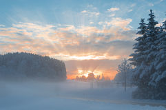 Winter morning snowy scenery with dawn sunlight rays breaking Royalty Free Stock Images