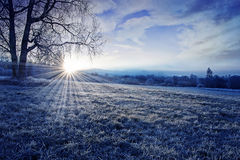 Winter morning with sunrise Stock Photos