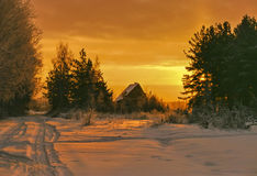 Winter morning Stock Image
