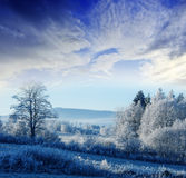 A winter morning with a sunrise Royalty Free Stock Photo