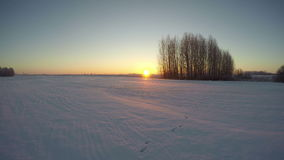 Winter morning sunrise, time lapse 4K. Winter morning sunrise  and farmland landscape, time lapse 4K stock video footage