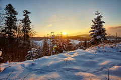 Winter Morning in Switzerland Stock Images