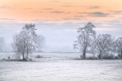 Winter morning in Teufelsmoor near Bremen Germany. At sunrise Stock Images