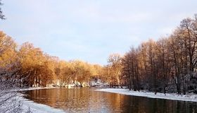 Winter Mornings. Winter by the river Royalty Free Stock Photos