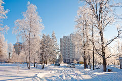 Winter Moscow, Russia. Stock Photo