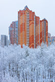 Winter in Moscow Russia. Architecture and nature background Stock Photo